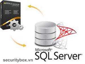 bảo mật database trong SQL Server